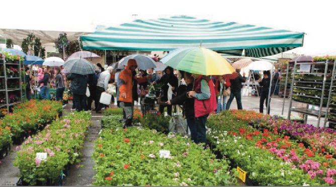 """Mostra mercato dell'agricoltura """"Maggio a Cles"""""""